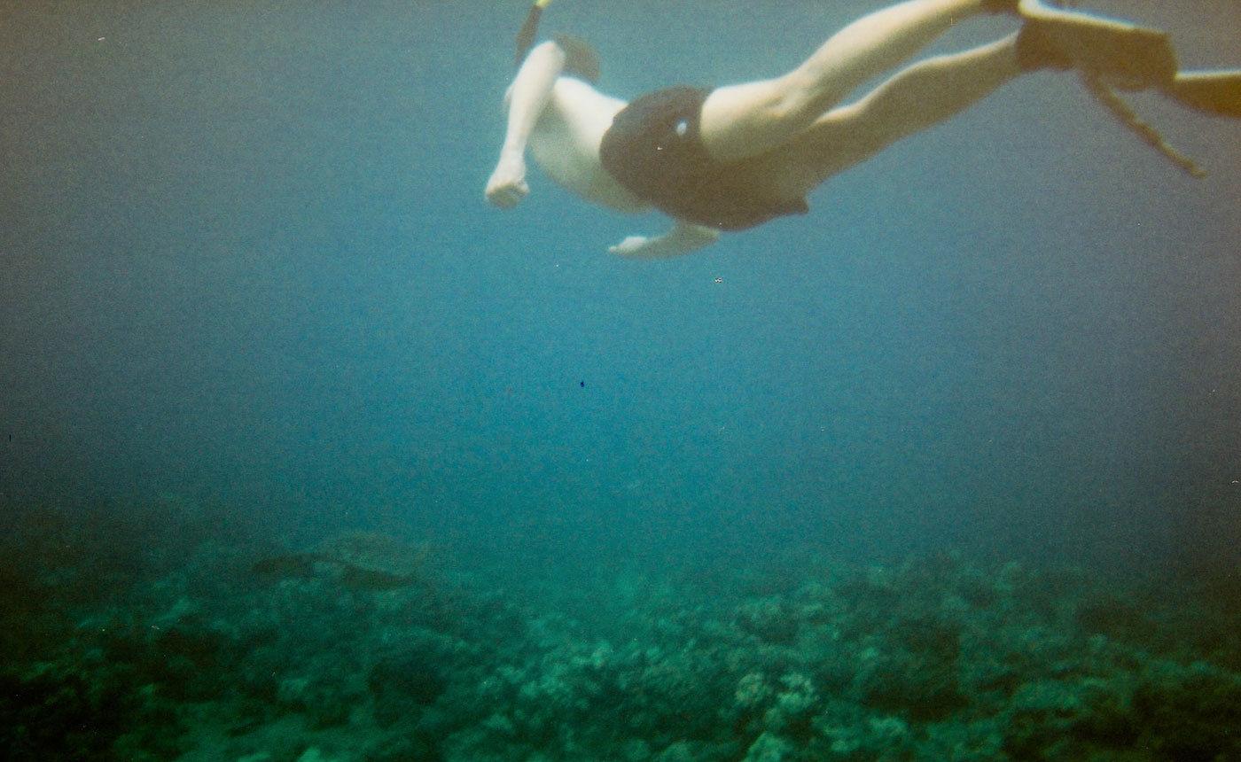 Ich und unten links die Schildkröte am Kailua Beach