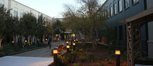 Der Campus ist wunderschön in Szene gesetzt